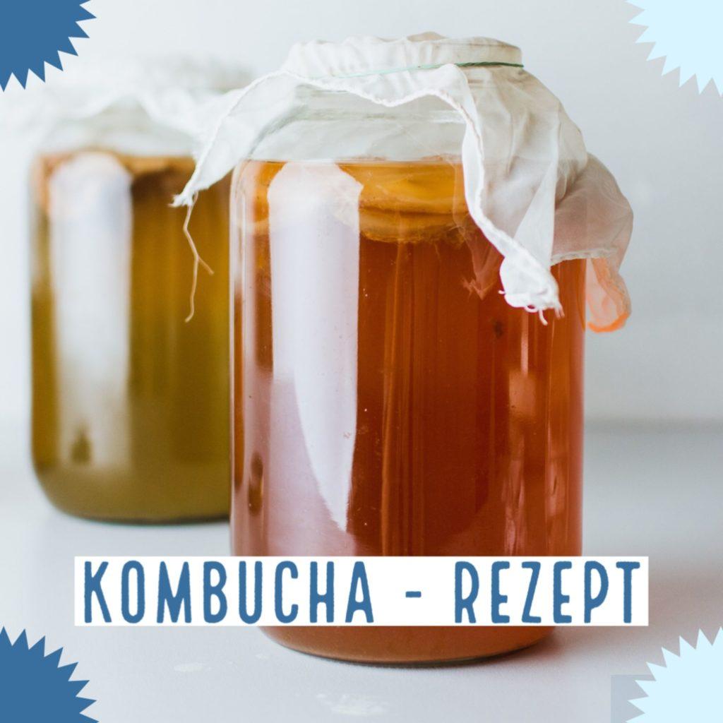 Kombucha Rezept